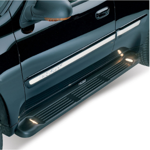 Westin Molded Running Boards (with lights)