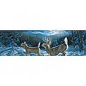 Vantage Point - Midnight Run - Millette