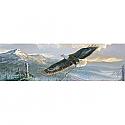 Vantage Point - Rebuilding America - Weirs