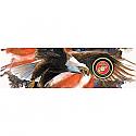 Vantage Point - Freedom Flight - Marines