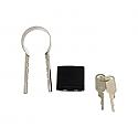 Bully Anti-Theft Tailgate Lock