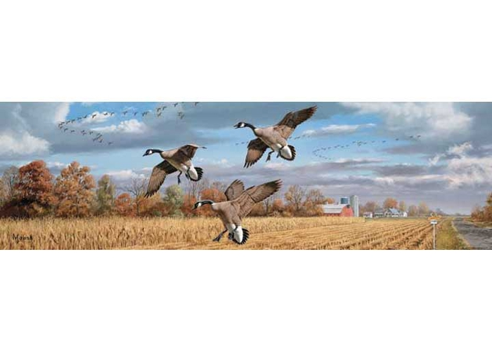 Vantage Point - Golden Bounty (Geese) - Rear Window Graphic - 020104L
