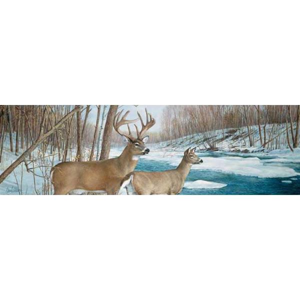 Vantage Point - Jordan Buck - VanGlider - Rear Window Graphic
