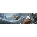 Vantage Point - Spirit of the Wild - Millette - Rear Window Graphic